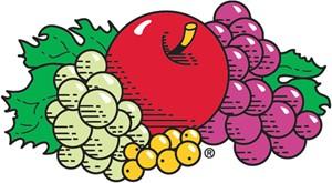 Fruit of the Loom Kleding Kopen Bij Een Dealer?